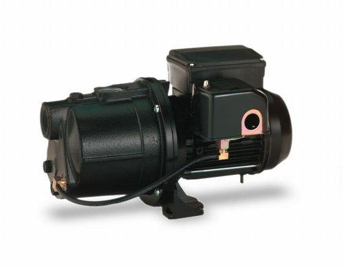 Pentair Water-Flotec-Simer 2802 3/4 HP Cast Iron Shallow Well Jet Pump