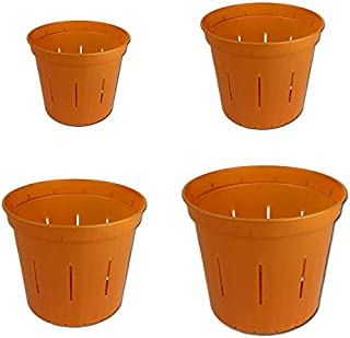 Slotted Clear Orchid Pots - Growers Assortment (8 pots 2 each, Copper Amber)