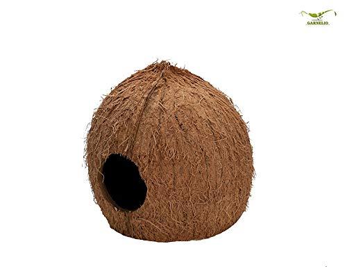 Natureholic Kokos höhle - 3/4 - für Terrarium & Aquarium - Ideal für Frösche