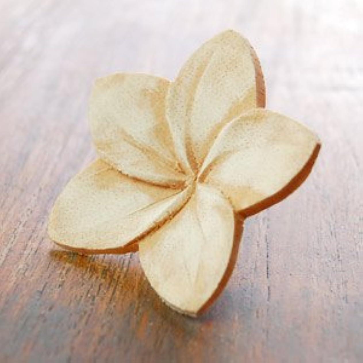 地雷原言うバッグ【アジア工房】プルメリアの花びらをモチーフにした木製アロマフラワー[Bタイプ][10892] [並行輸入品]