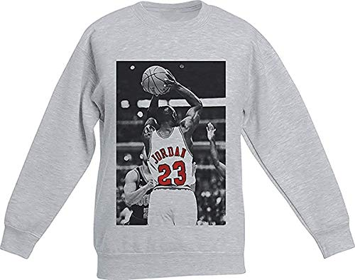 Actual Fact Michael Jordan Basketball Urban Grau Sweatshirt - grau, L