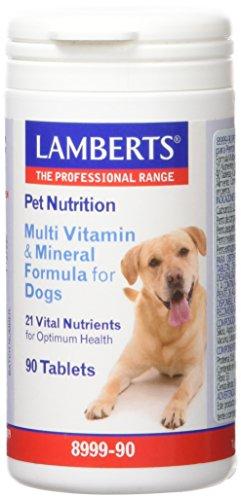 Lamberts Complemento Alimenticio - 90 Cápsulas