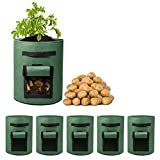 Delxo 5 Pack 7 Gallon Potato Grow Bags Two SidesVelcro Window Vegetable Grow Bags, Double Layer Premium Breathable Nonwoven Cloth for Potato/Plant Container/Aeration Fabric Pots with Handles(Green)