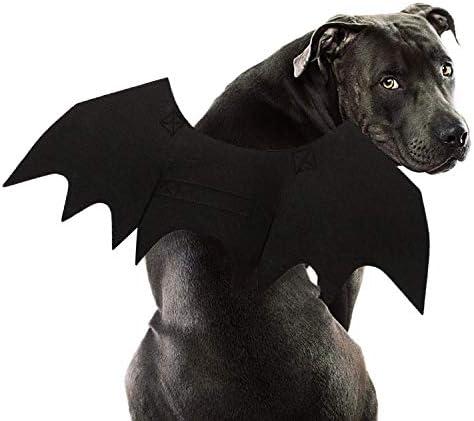 Rypet Dog Bat Costume - Halloween Pet Co