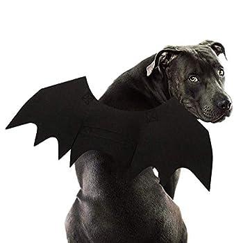 RYPET Dog Bat Costume - Halloween Pet Costume Bat Wings Cosplay Dog Costume Pet Costume for Party L