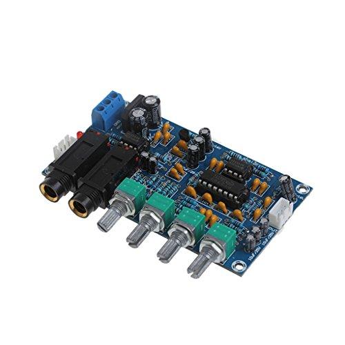 ZOUCY Tablero Amplificador de micrófono de Doble Potencia Sonido AMP Módulo Placa...