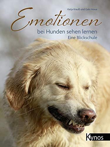 Emotionen bei Hunden sehen lernen: Eine Blickschule