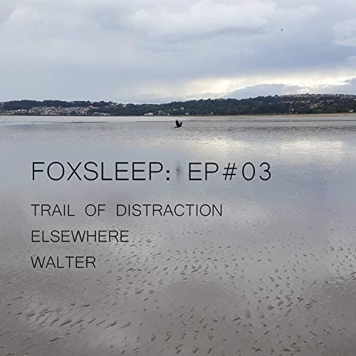 FoxSleep