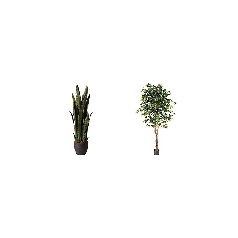 silk flower arrangements nearly natural, green 4855 35in. sansevieria with black planter & 6ft. ficus artificial trees, 72in, green