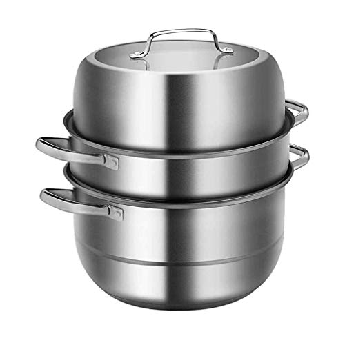 WANGIRL Vaporizador de Acero Inoxidable Vaporización Energía Ahorro de energía Caldera Hogar Cocina Comedor Caja de Cocina LOLDF1