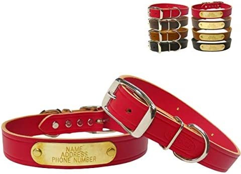 Warner Cumberland Leather Dog Collar Free Engraved Brass ID tag 21 Fits 15 19 Neck Red USA product image