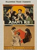 Adam's Rib [DVD]