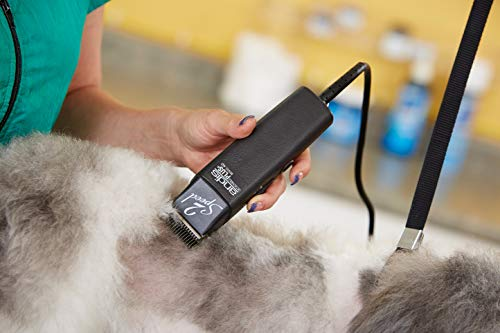 Andis 2-Speed+ Detachable Blade Clipper, Professional Animal/Dog Grooming,...