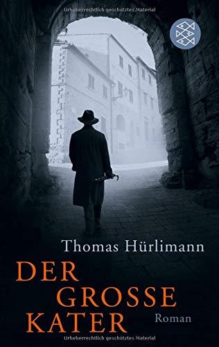 Der große Kater: Roman