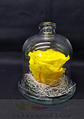 Almaflor Rosa eterna Amarilla. Gratis TU ENVÍO Prime. Rosas preservadas Amarillas con Tarjeta dedicatoria, Caja y Envoltorio para Regalo. Fabricado en España.