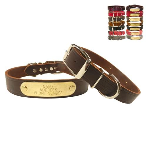 Warner Cumberland Leather Dog Collar Free Engraved Brass ID tag USA