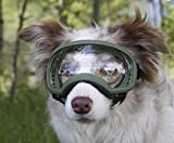 Rex Specs Dog Goggles