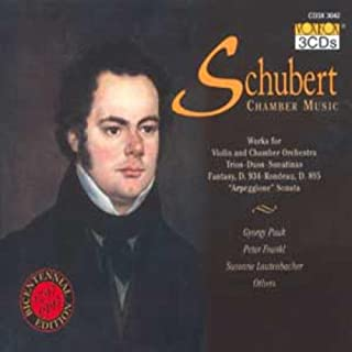 SCHUBERT:Chamber Music: Violin Works: Duo in A D. 574, Fantasy in C D. 934, Sonatina in D D. 384, Sonatina in A minor D. 3...