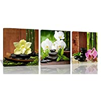 キャンバス絵画 植物の花の風景 モダンフレームポスター アートパネル ラッキー竹 ストーン 3枚 インテリア絵 おしゃれ壁アート プリント壁飾り 壁掛け 写真印刷の装飾 背景絵画 贈り物,50x50cmx3(フレーム)