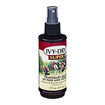 Best ivy dry Reviews