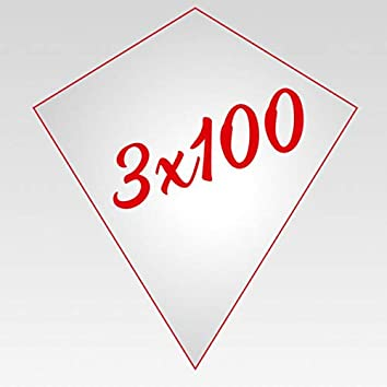 3x100