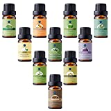 Zoom IMG-1 lagunamoon olio essenziale top 10