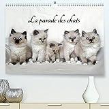 La parade des chats (Premium, hochwertiger DIN A2 Wandkalender...