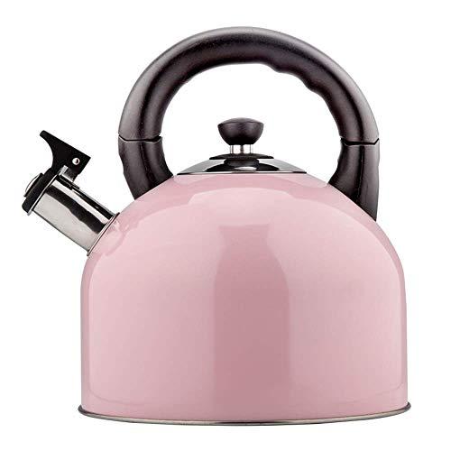 Bouilloire à sifflet à Induction - Acier Inoxydable 304, 4L, Bec verseur Grand diamètre de 30mm, Finition élégante Rose