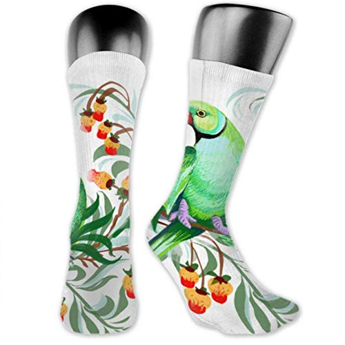 Calcetines Leila Marcus para hombres y mujeres son cómodos, ligeros y sudorosos, divertidos dibujos para hombre, aislados de moda, calcetines medianos y largos.