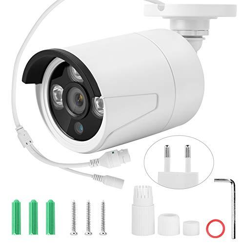 Cámara inalámbrica, cámara de vigilancia inalámbrica, Vista Nocturna de Infrarrojos Duradera de 2Mp para(White, European regulations)