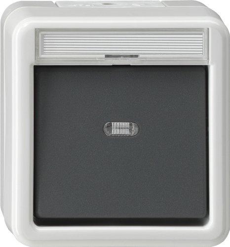 Gira Wipptaster 015230 + Meldekontakt WG AP grau