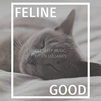 Feline Good: Cat Sleep Music, Kitten Lullabies