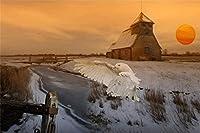 DMFNGJSD 数字油絵 フレーム付き 、数字キット塗り絵 手塗り DIY絵-冬のワイルドフクロウロッジ-デジタル油絵 40x50 cm