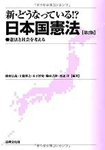 新・どうなっている!?日本国憲法―憲法と社会を考える
