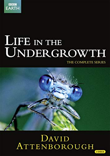 Sir David Attenborough: Life in the Undergrowth (Repackaged) (2 DVDs)