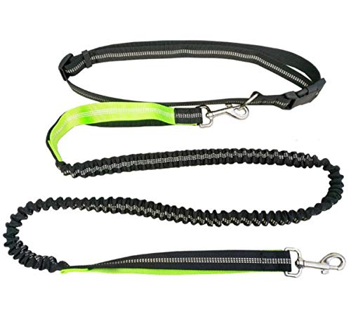 AYUTION Hands Free Dog Leash for Running Walking Training