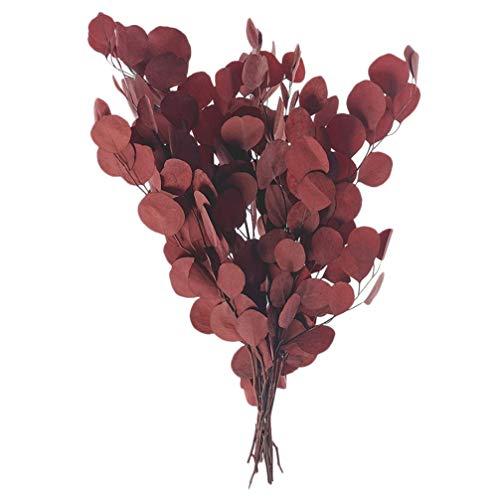 Cabilock Eukalyptus Eukalyptusblätter Getrocknete Eukalyptus Künstlich Pflanzen Zweige Blumen Bouquet Dekoration Stängel Hochzeit Weihnachten Tischdekoration Zubehör (Rot)