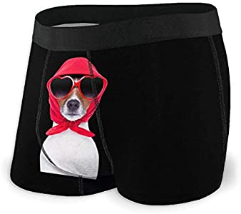 Yuanmeiju Mens Boxer Shorts Fitted Bragas Funny Dog Lady Trunks Quick Dry Ropa Interior