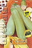 L'Orto di Semar Semi di zucchino Opal F1 varietà Ibride in Busta