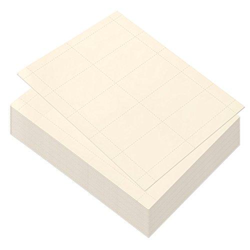 Best Paper Greetings Papel en blanco para tarjetas de visita, 1000 cartulinas para impresoras de inyección de tinta y láser (100 hojas) 3,5 x 1,9 pulgadas Marfil