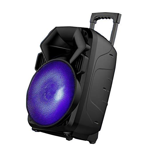 """Unbekannt 12\"""" PA-Anlage Musikanlage, 1 x drahtlose Handmikrofone, Eingebaute Wageneinrichtung, Integrierter digitaler USB/SD-Audio-Player"""