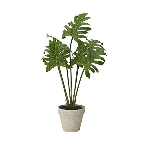 ドウシシャ 人工観葉植物 グリーン 約52.0cm モンステラ HAC-037