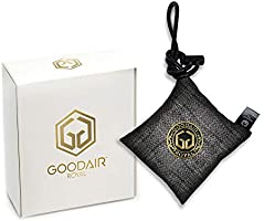 GOODAIR Royal Impregnated Activated Carbon Indoor Car Air Purifier | Non-electric | Elegant Silver