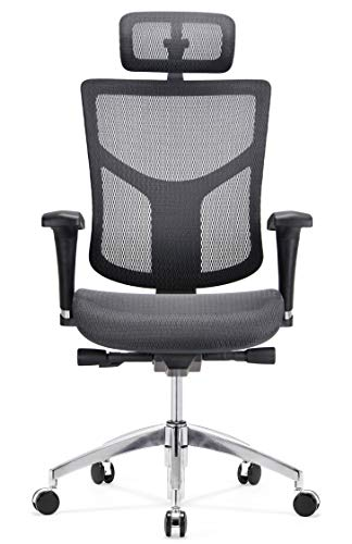 GM Seating Ergonomic Mesh Office Chair Dreem II Mesh Series, Black Mesh, Chrome Base (Headrest)