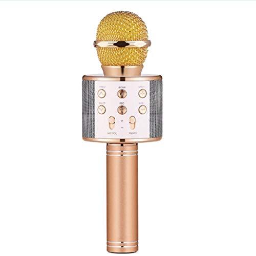 Microfono Senza Fili Bluetooth per Karaoke