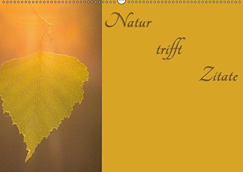 Natur trifft Zitate (Wandkalender 2017 DIN A2 quer): Naturbilder geschmückt mit Zitaten (Monatskalender, 14 Seiten ) (CALVENDO Natur)