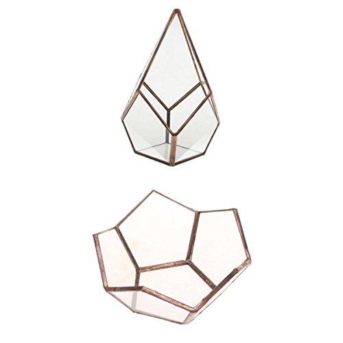 MagiDeal 2pcs Terrarium Géométrique Boîte à Bijoux Terrarium Décoration Bijoux Titulaire