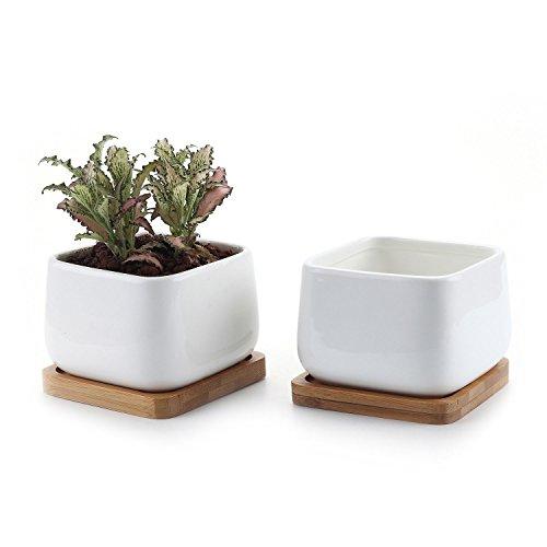 T4U 10CM Keramik Sukkulenten Töpfe Kaktus Pflanze Töpfe klein Blumentöpfe mit Bambusuntersetzer Abgerundete Quadrat NO.2 Weiß 2er Set