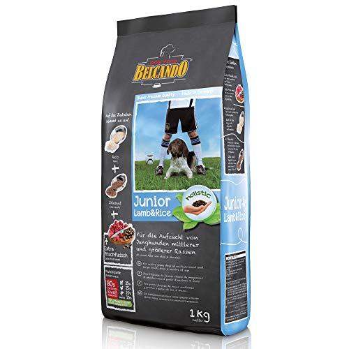 Belcando Junior Lamb & Rice [1 kg] Hundefutter | Trockenfutter für empfindliche Junghunde | Alleinfuttermittel für Junghunde ab 4 Monaten