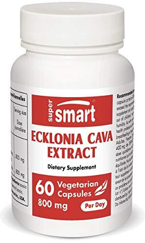 Supersmart - Ecklonia Cava Extract 400 mg (SEANOL-F ®) - Standardisiert auf 15{30703cdf01388923157bb455002bb184208b3dec6076d1807750eb1af4ae01c8} Phlorotannine - Meeresalgen mit antioxidativen Eigenschaften | Nicht GVO & Glutenfrei - 60 vegetarische Kapseln